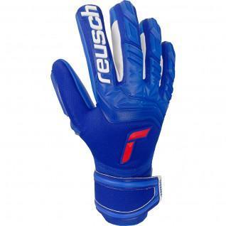 Reusch Attrakt Freegel Silber Handschuhe